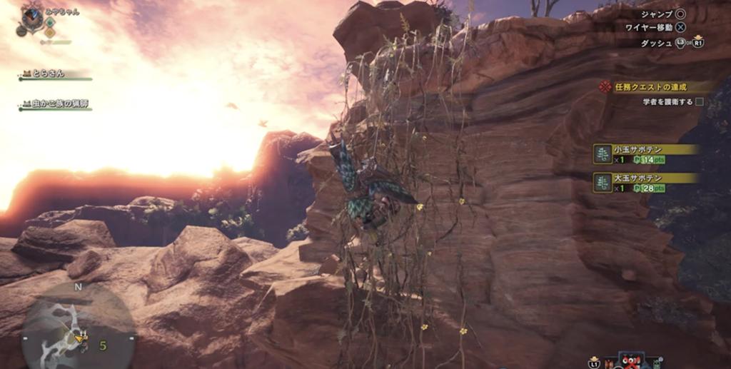 大蟻塚の高台